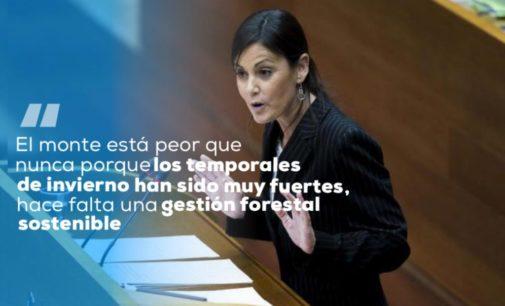 Elisa Díaz, portavoz de Medio Ambiente en Les Corts, en los 'Encuentros Digitales' del PP de Villena