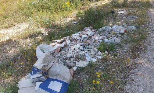 Limpieza de un vertedero clandestino junto al polideportivo municipal