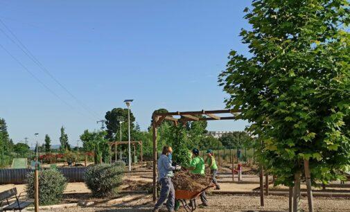 El parque canino vuelve a abrir sus puertas en Villena