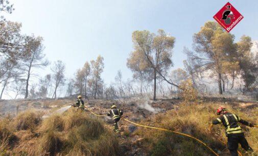 El fuego arrasa 140 hectáreas de masa forestal en Monóvar