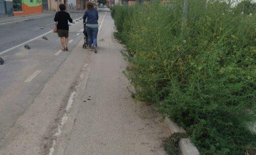 Ciudadanos denuncia la pérdida de una ayuda de 20.661 euros para el Plan de Movilidad