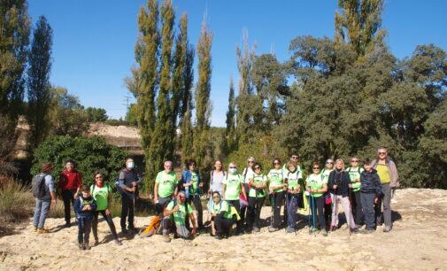 Aviana en la Rambla de los Molinos en Almansa