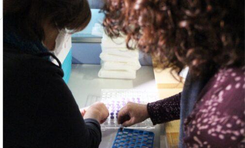 El Colegio de Enfermería de Alicante solicita a Puig  que cuente con profesionales del sector privado para la segunda dosis de la vacuna