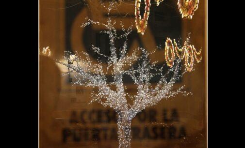 Fulgencio Ferriz gana el concurso de fotografía de Navidad y Reyes 2021