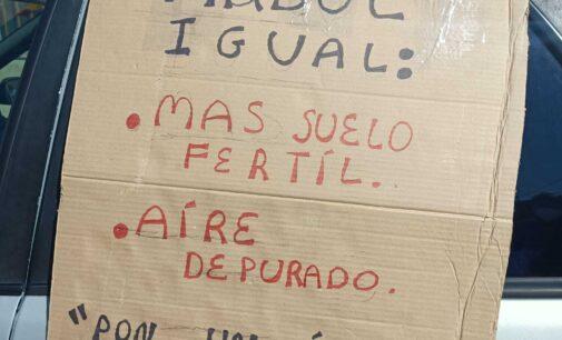 Vecinos de Salinas y la comarca se manifiestan contra la tala de árboles