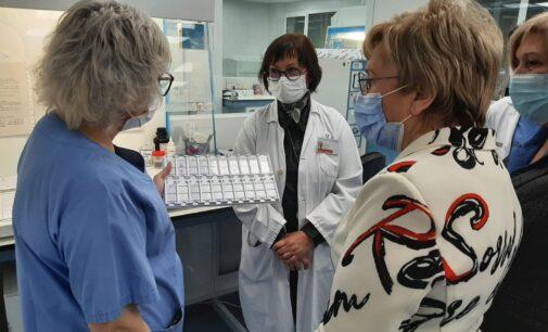 El nuevo laboratorio de Anatomía Patológica del Hospital de Elda realiza 22.000 determinaciones anuales