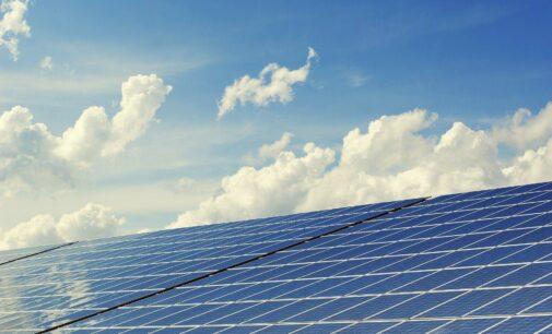 Los Verdes se mantienen firmes en suspender las licencias de las plantas fotovoltaicas