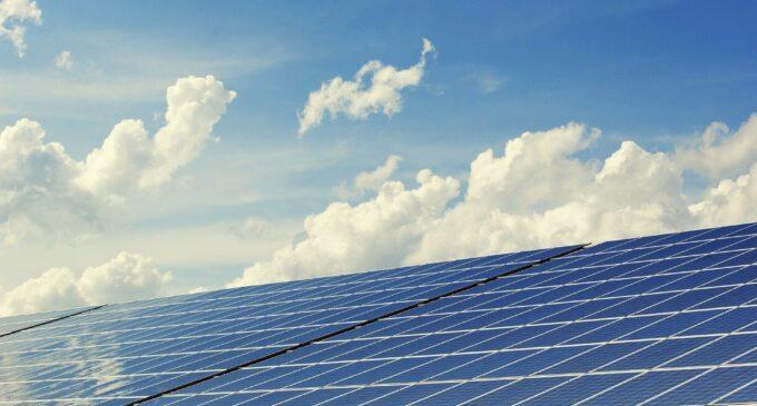 Villena estudiar paralizar dos años las licencias de las fotovoltaicas para reorganizar el territorio