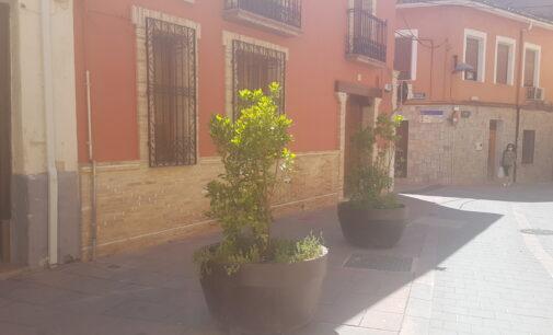 Ubican seis maceteros de grandes dimensiones en la calle San Antón de Villena