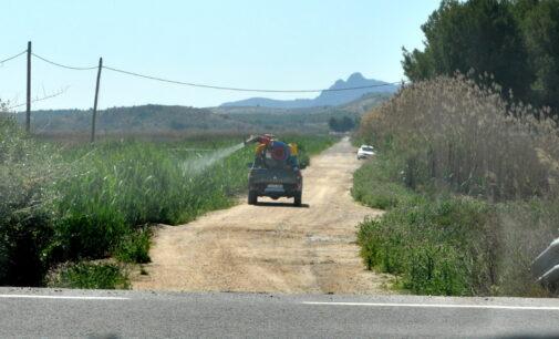 Medio Ambiente reactiva la campaña contra la plaga de mosquitos en 20 posibles focos