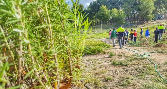 Publican los vídeo talleres formativos para celebrar el Día Internacional del Medio Ambiente