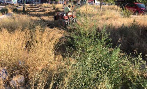 Villena inicia una campaña de limpieza y desbroce en todo el término municipal