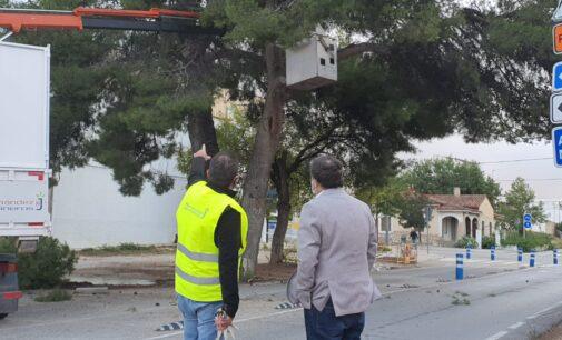 La difusión de una información sobre podas por parte del PSOE genera el malestar de Los Verdes