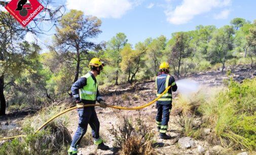 Extinguido un incendio forestal cerca de Biar