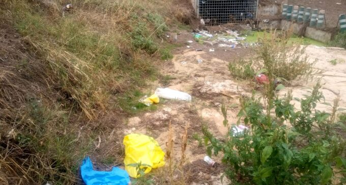 Medio Ambiente limpia la Rambla del Conejo de basura y plásticos