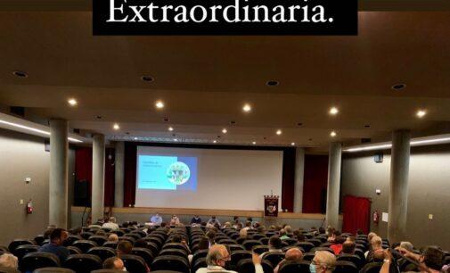 La Junta Central de Fiesta aclara aspectos de la aprobación de los estatutos